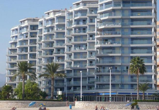 Apartment in Calpe / Calp - HIPOCAMPOS