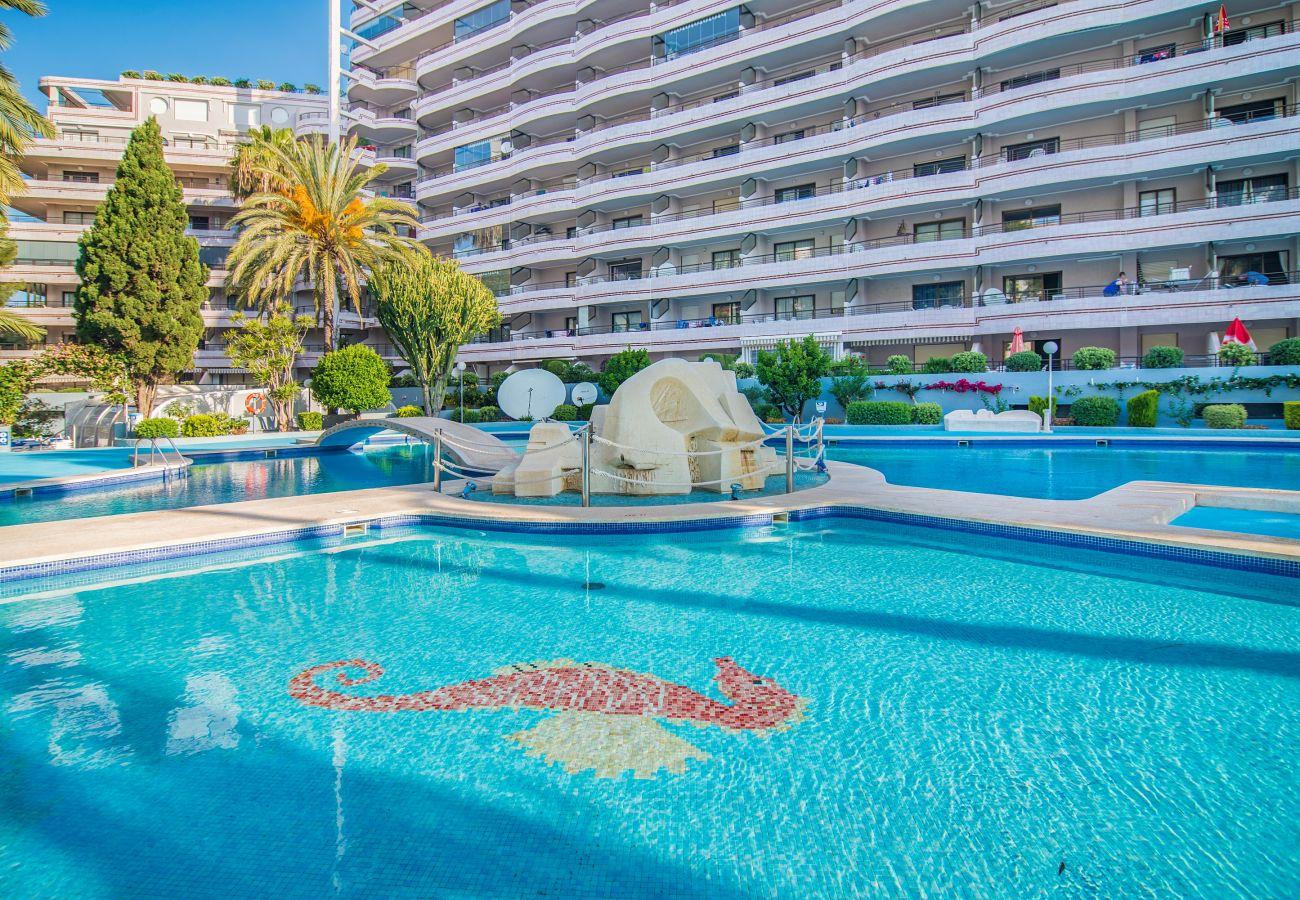 Apartment in Calpe - PARAISO MAR 1 DORMITORIO